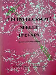 Plum Blossom Needle Therapy